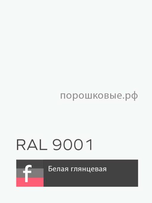 Порошковая краска по металлу белая глянцевая RAL 9001